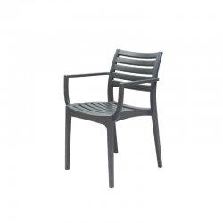 כסא איריס עם ידיות